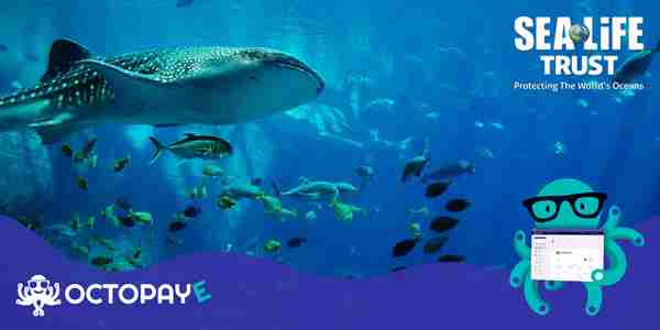 Time and tide – Why we support SEA LIFE Trust